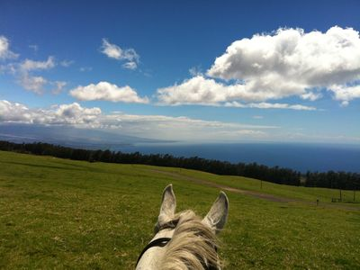 Photo for Ranch Retreat at Kahua Ranch- Private Ranch Paradise in Kohala Sleeps 8