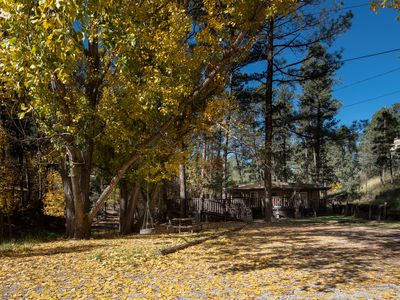 Photo for Secluded Cabin w/ Deck, Fireplace, WiFi & Just Minutes from Downtown