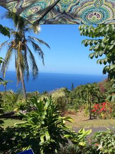 Photo for Honaunau lush coffee farm, special rate for Aug/Sept.,  5 minutes to snorkeling!