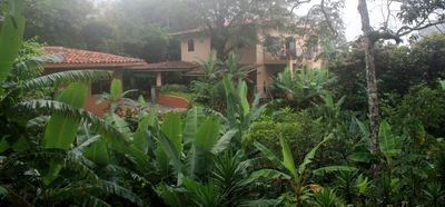 The Hacienda Bed and Breakfast is situation in a banana forest