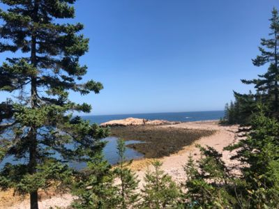 Here is the outside view to the Gulf of Maine and the Bay of Fundy (Down East).  You can walk out to this outcropping at low tide.