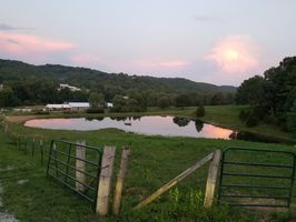 Photo for 3BR House Vacation Rental in High Ridge, Missouri