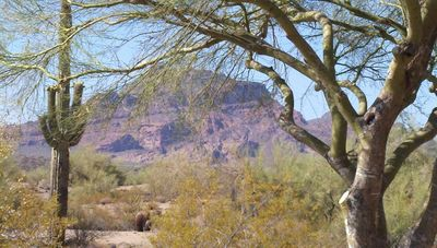 Photo for OUTSTANDING VIEWS in Golf Community Red Mountain Ranch, with POOL/CLUB Access