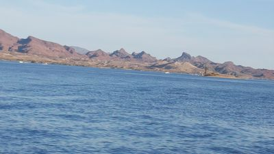 Photo for Our Peaceful Havasu Getaway!!