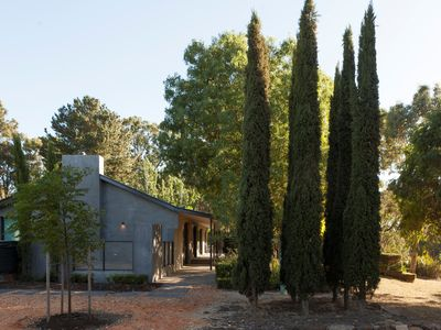Photo for EAST WING - Modern Home on Olive Grove