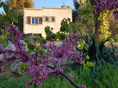 Photo for New in Marseille Pretty house of 100m2 in the middle of greenery, in the Panouse ..