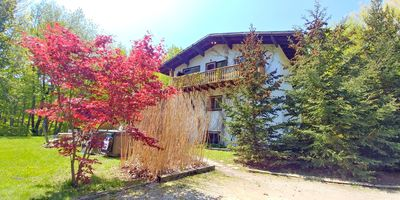 Photo for Walking Distance to The Blue Mountain Village! Beautiful Chalet In Private Forest 616276