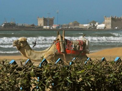Photo for House / Villa - ESSAOUIRA diabat