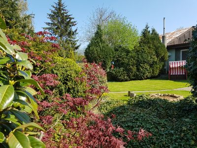 Photo for Holiday house Garz for 1 - 4 persons with 1 bedroom - Holiday home