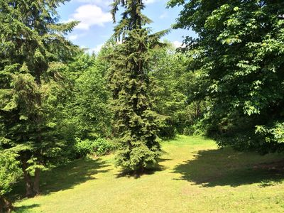 Photo for 14 Acres Of Private Forest - Large 1400 Sq Ft Apt - Mins. From Amenities & Hwy