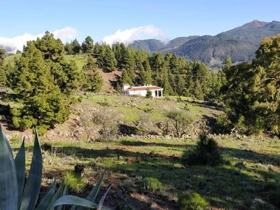 Photo for holiday home, El Paso  in La Palma - 2 persons, 2 bedrooms