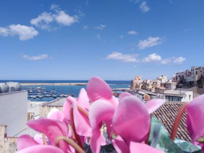Photo for Apartment with Terrace with wonderful view of the gulf and the Castle