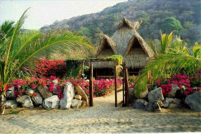View of the main palapa from the beach