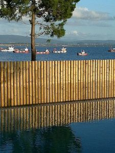Photo for 2BR Apartment Vacation Rental in Illa de Arousa, Galicia