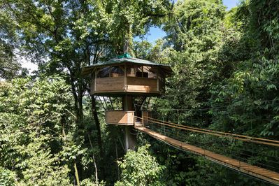 El Castillo Mastate... your treetop home away from home!