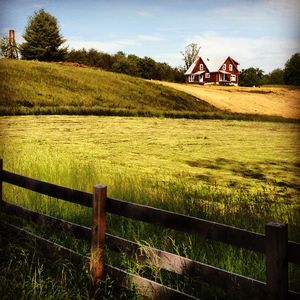 Photo for Working Farm in Central Va Wine Region, 35 Minutes from Uva
