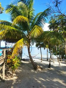 Photo for Never Winter Resort featured on HGTV's Caribbean Life!