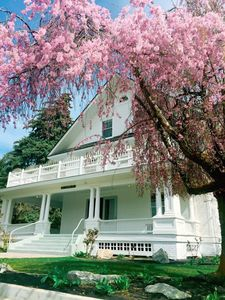 Photo for Whaley Manor: 7  BR, 8  BA House in Chelan, Sleeps 13