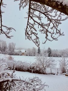 Photo for The Rural Cottage of Antre Lacs
