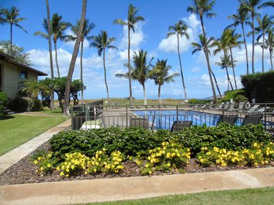 Photo for Waiohuli Beach Hale D115 - Aloha Kai - Oceanfront/1b1b/Wifi/AC/Cable/Pool/Extras