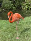 Visit the flamingos - they eat of of your hand in nearby Sarasota