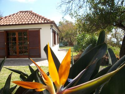 Photo for Detached house with large garden and sea views, Los Llanos within walking distance