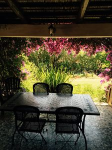 Photo for The bougainvillea, a corner of paradise in the countryside