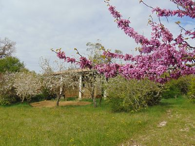 Photo for Treat yourself to a sublime escape in the pretty little village of Faudoas.