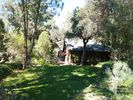 3BR Cabin Vacation Rental in Pine Valley, California