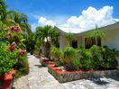 Villas set in a tropical setting, flowering shrubs andtrees