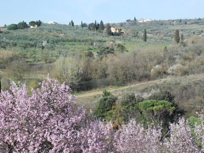"Photo for Holiday house ""The Oleander Belfiore"". In the hills but a stone's throw from Florence"