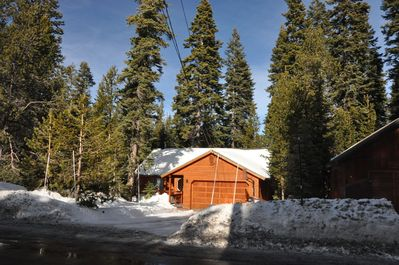 """""""MOUNTAIN GETAWAY"""" surrounded by tall fir trees, close to ski and recreation."""