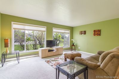 Large living with a lot of light and pull out couch