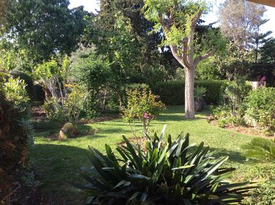 Fabulous garden, fruit trees, flowers, hours can be spent wondering or reading