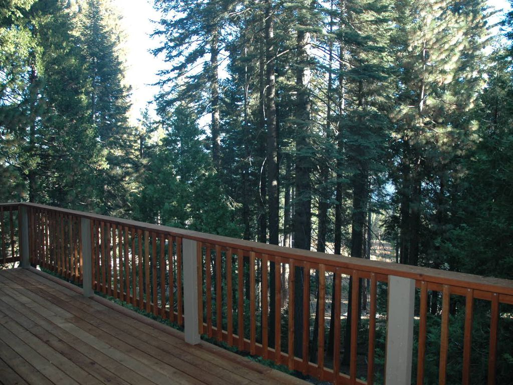 Treetop views from the deck of Mendonca Cabin - 3 bdrm, 2 bath, sleeps 8.