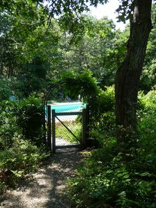 Gate to fenced, private in-ground gunite pool