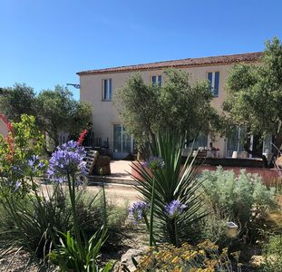 Photo for Bed and breakfast in Camargue