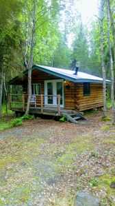 Photo for Cabins near Kenai River