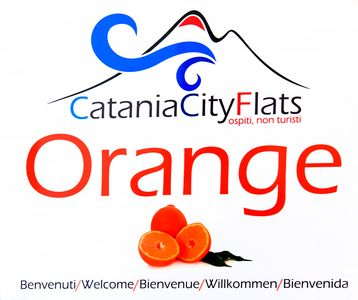 Photo for CataniaCityFlats ORANGE apartment in the historic center of Catania