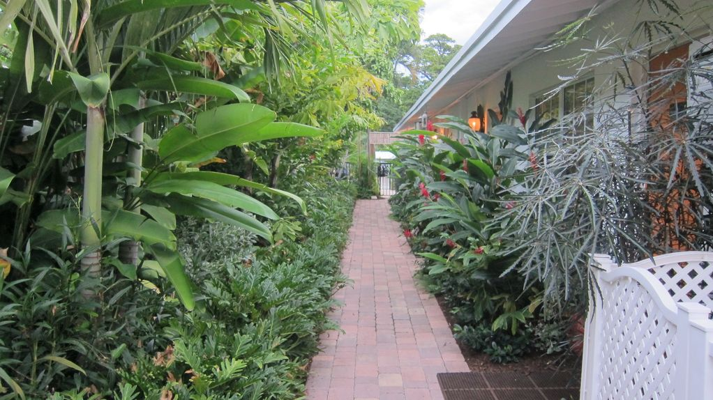 Just remodeled 2 BR Villa w/Salt Pool- Walk to Ave & Beaches