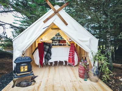Photo for Beachfront Glamping Tent, Ocean views and wildlife