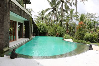 Magnificent 18 m x 8 m Outdoor Swimming Pool