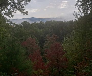 From back porch in early October.