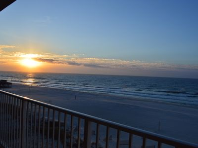 Photo for Sea The Dolphins, Sea The Shore From Beautiful 504!