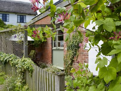 Photo for 1 bedroom accommodation in Fluxton, near Ottery St Mary