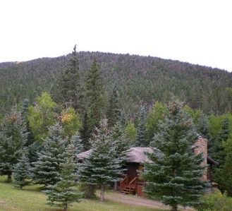 Cabin Nestled in Pines-Valley View, Mtn Trails, Cucharas River