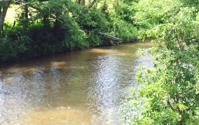 30-foot wide creek