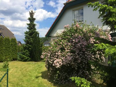 Photo for Holiday apartment Trassenheide for 1 - 4 persons with 2 bedrooms - Holiday apartment