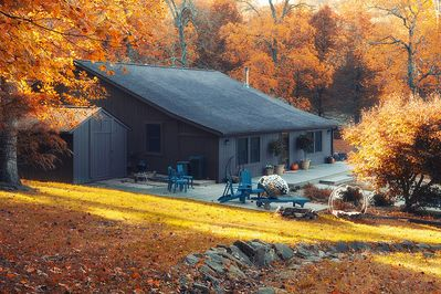 Gorgeous fall colors show off the lush forest that surrounds the house.