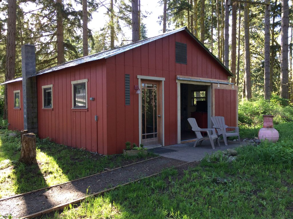 Riverwalk cabin in the olympic forest with private trail for Cabin rentals olympic national forest